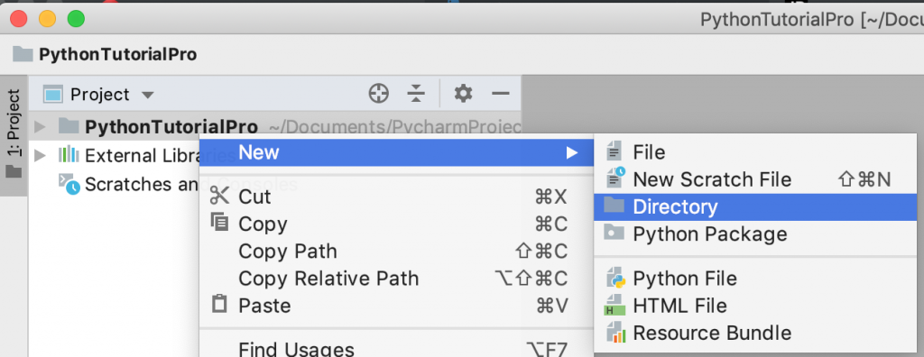 PyCharm Project New Directory