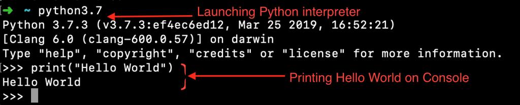 Python Interpreter Hello World Example