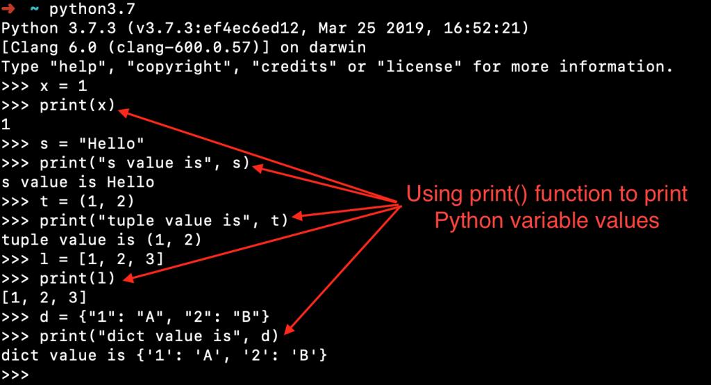 Python Variable Print