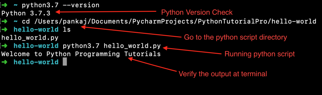 Running Python Script From Command Line