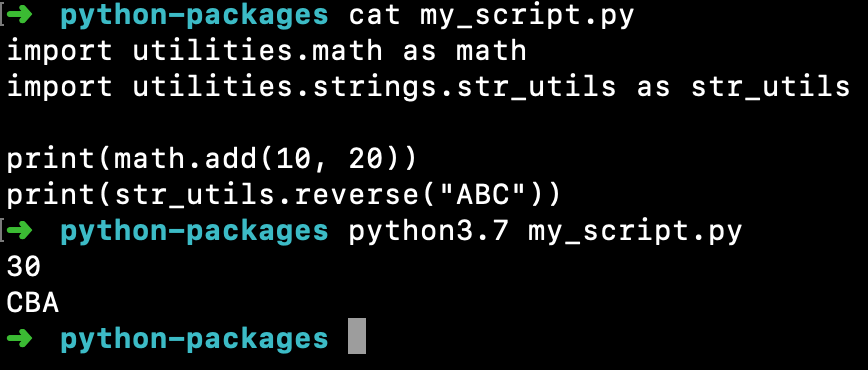 Importing Package Module In Python