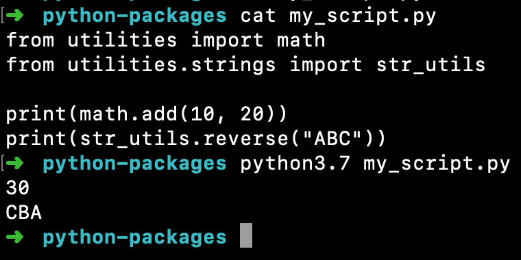Python From Package Import Module