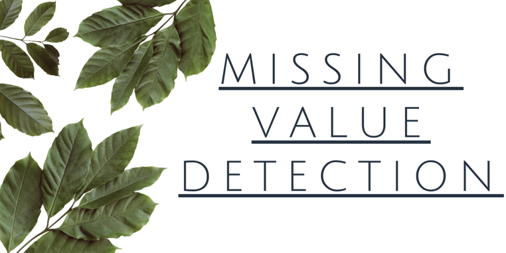 Missing Value Detection In Python