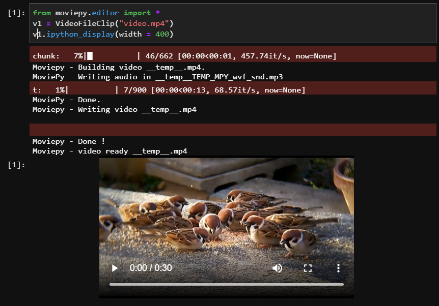 Output Loading Video Moviepy