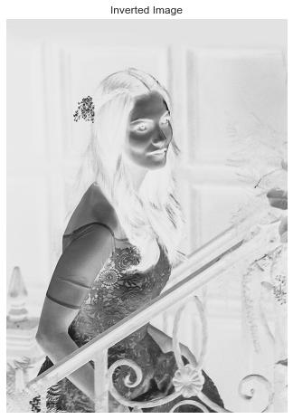 Inverted Image Pencil Sketch